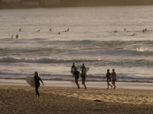 Impressions from Bondi Beach