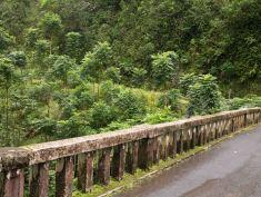 One lane bridges on the way to Hana