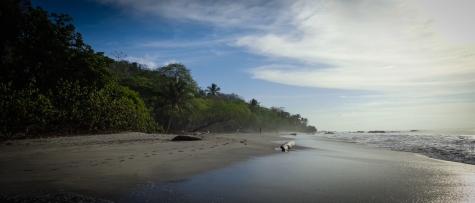 Playa Grande the surf beach near Montezuma, Costa Rica