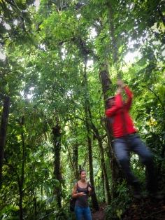 Tarzan swing :)