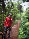 Hanging Bridges in the forest