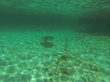 Snorkel impression